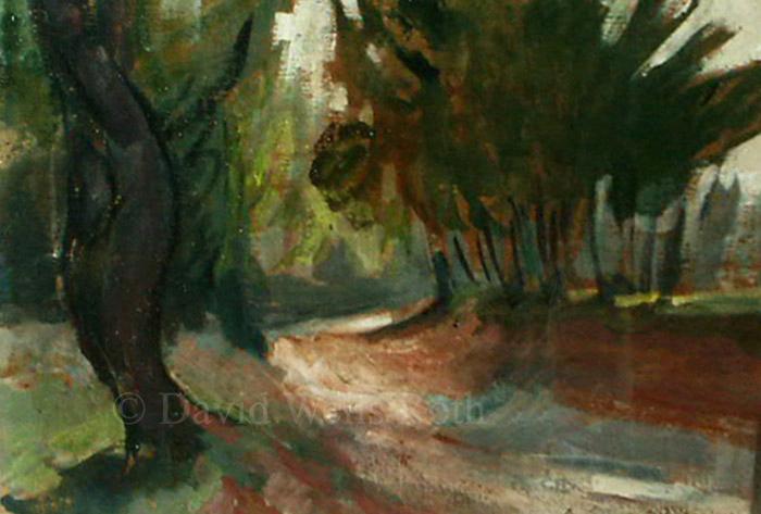Trees near Avignin