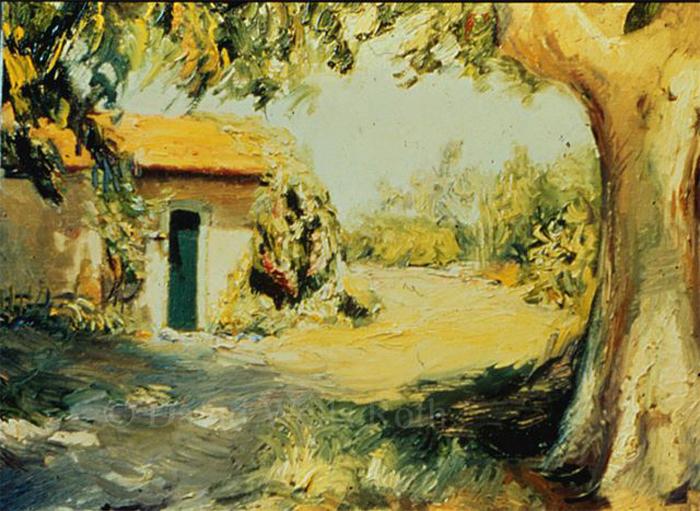House near L'ile sur Sorgue, France,